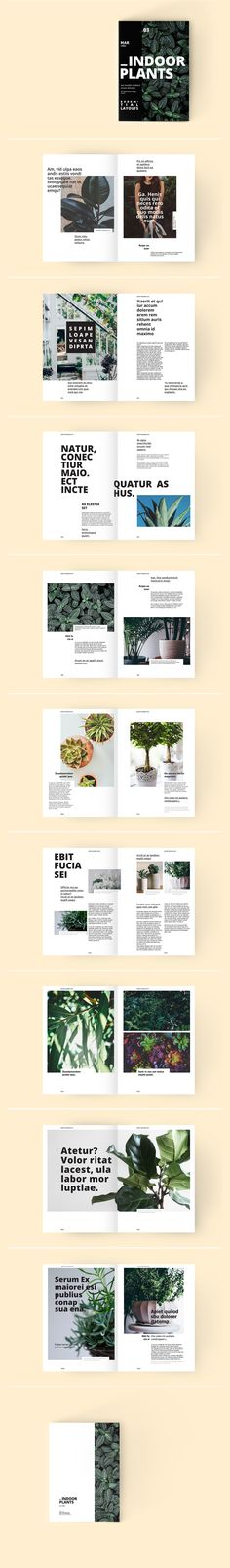 A Set of trendy minimalistic InDesign page layouts that will help you create a modern looking magazine. Grid based A4 template suitable also for catalogue, booklet, brochure and many more layouts. Also included a beginner friendly help file with instructi…