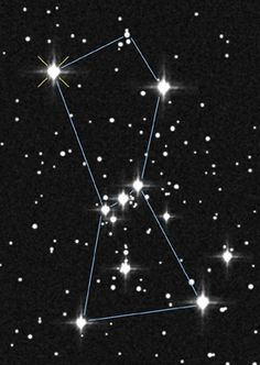 Wonder of nature: Orion constellation; with the red super giant Betelgeuse and the blue giant Rigel