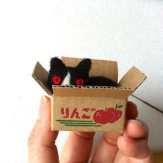 Cat in a Box -- Hine Mizushima is an illustrator, slow crafter, and puppet stop-motion video artist.