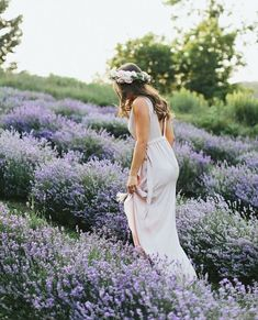 Lavender field photo shot