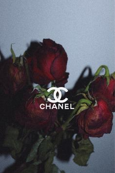 chanel, rose, and red image