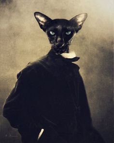 """This is """"Othello."""" A vintage anthropomorphic victorian portrait and animal photography were combined using artistic techniques to create this print."""
