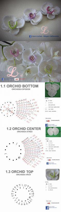 Las orquídeas tejidas.