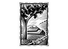 farm scene  by Steven Noble