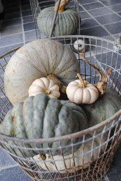 Pumpkins . . .add to these: sea shells & driftwood for the perfect Autumn retreat at the beach house.