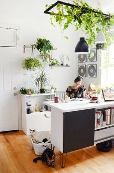 Two Savvy Solutions for Ugly Rental Kitchen Lights — Apartment Therapy Decoration Ikea, Decoration Plante, Rental Kitchen, Home Decor Kitchen, Kitchen Rustic, Cozy Kitchen, Cute Home Decor, Cheap Home Decor, Interior Design Chicago