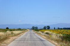 Road to Hospital de Orbigo #Camino 2015 july McG - day 24