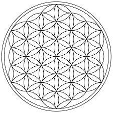 The Seed of Life and the Vesica Piscis Tribal Henna Designs, Tattoo Designs, Birch Tree Decor, Geometric Trees, Geometric Art, Flower Of Life Pattern, Sacred Geometry Patterns, Butterfly Mandala, Les Religions