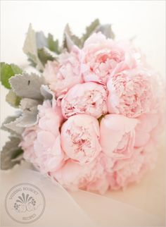 peonies and lambs ear <3