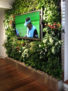DIY Create a Vertical Garden Wall Inside Your Home: The best designs
