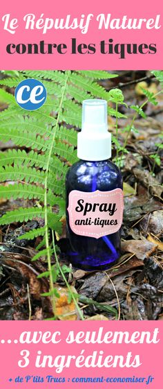 Finally a natural repellent against ticks with formidable efficacy. Mosquito Plants, Brown Skin Makeup, Eye Makeup, Health Care Reform, Be Natural, Medical Care, Take Care Of Yourself, The Cure, Herbs