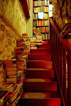 Book | 著作 | книга | Livre | Libro | Read | 読む | Lire | читать | Leggere | Leer |