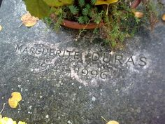 Marguerite Duras, Authors, Plants, Stone, Plant, Planets, Writers