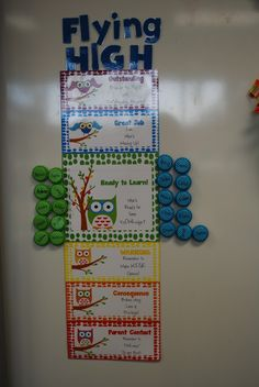 Hoot and Holler: Owls Owl Classroom Decor, Future Classroom, Classroom Themes, 4th Grade Classroom, Kindergarten Classroom, Classroom Behavior Management, Behavior Plans, Behaviour Management, Teacher Helper