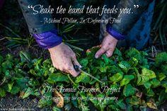 hands courtesy of farmer Elizabeth - bushy tail farm, quote courtesy of author Michael Pollan