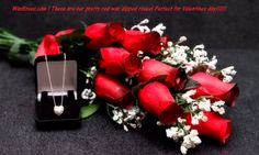 Red Wax Roses