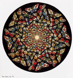 M.C. Escher - Spring makes me think of butterflies!