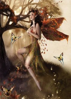 Autumn fairy❁╰☆╮✥❤✥╰☆╮❁