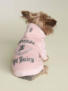 ok, now I'm obsessed with my dogs wearing Juicy!