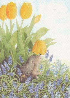 Hedgehog by inge look Art And Illustration, Helsinki, Flower Yellow, Yellow Tulips, Watercolor Flowers, Watercolor Art, David The Gnome, Look Plus, Whimsical Art