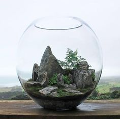 Terrariums are beautiful miniature landscapes, a slice of nature housed in glass. Terrariums are perfect for adding stunning plant life to your home or office. Below showcases a brief selection of 'Desert World' & 'Forest World'… Mini Terrarium, Terrarium Scene, Terrarium Centerpiece, How To Make Terrariums, Glass Terrarium, Succulent Terrarium, Terrarium Ideas, Decoration Cactus, Decoration Plante