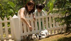 Fun with Bunnies at Novus Giri Hotel and Resort Puncak