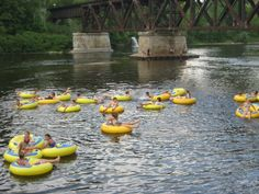 9 Lazy Rivers in Michigan That Are Perfect for Tubing on a Summer's Day Muskegon River, Manistee River, Muskegon Michigan, Lake Michigan, Western Michigan, Michigan Usa, Minnesota, Michigan Vacations, Michigan Travel