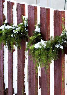 kuva Tis The Season, Diy And Crafts, Christmas Wreaths, Candles, Seasons, Holiday Decor, Plants, Home Decor, Winter