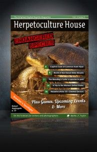 Herpetoculture House Magazine House And Home Magazine, Food, Meals, Yemek, Eten