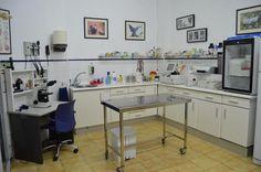 Clínica veterinaria Faycan