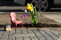 Cool - The pothole gardener (AKA the guerilla gardener) strikes again!  Steve Wheen fills potholes with plants, soil and mini props...aren't they charming?