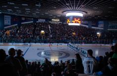 Comets Fans and AUD Experience Praised Utica Comets, Vancouver Canucks, Aud, Hockey, Places To Go, Field Hockey, Ice Hockey