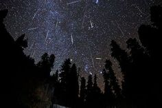 "The Orionid meteor shower will rain bits of Halley's Comet on Earth tonight in a promising weekend ""shooting star"" display. You can even watch the celestial fireworks online if bad weather spoils your local view.  CREDIT: Brad Goldpaint/Goldpaint Photography   View full size image"
