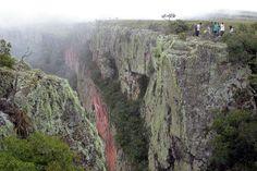 Reserva Departamental Valle de Tucavaca. Santa Cruz, Bolivia