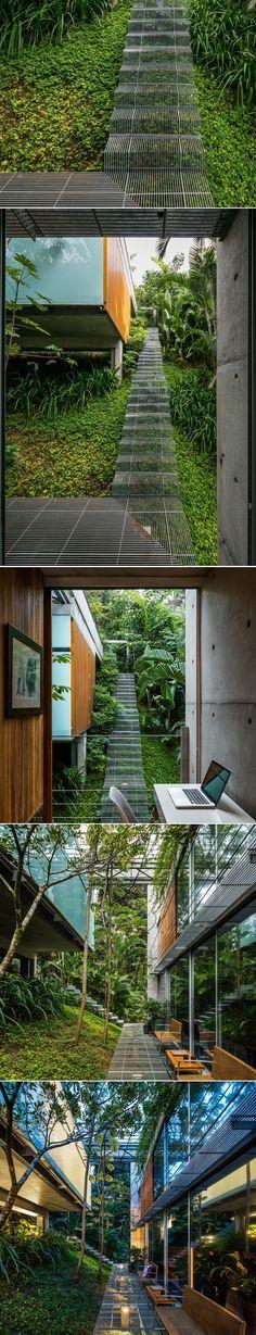 Landscape Design Idea – Low impact stairs that allow plants to grow below them   CONTEMPORIST