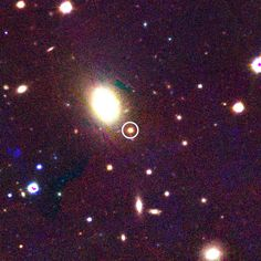 PS1-12sk, the yellow dot at image center (circled), is classified as a very rare Type Ibn supernova - only the sixth such example found out of thousands of supernovae. It was discovered on the outskirts of a bright elliptical galaxy (the yellow blob to the upper left of the supernova) located about 780 million light-years from Earth. A Type Ibn supernova is thought to come from the explosion of a young, massive star.