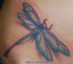 http://www.mania-tattoo.com/Photos-tatouages-pictures-tattoos/Insects/Tattoo-libellule-dragonfly//go/67-Mania-tattoo.com-tattoo-libellule-dragonfly-.jpg