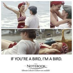 """Now, say you're a bird."" - Allie 