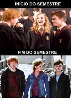 Memes Harry Potter Portugues 55 Ideas For 2019 Harry Potter Tumblr, Memes Do Harry Potter, La Saga Harry Potter, Funny Quotes, Funny Memes, Memes Humor, Funny Phrases, Animal Jokes, New Memes
