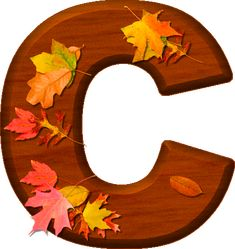 Presentation Alphabets: Cherry Wood Leaves Letter C