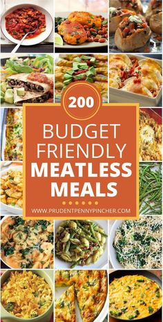 200 Meatless Meals for Families on a Budget These meatless recipes are healthy, cheap and flavorful. As you probably already know, meat is the most expensive part of the grocery bill so going meatless is an easy way to reduce food costs. Tasty Vegetarian, Vegetarian Dinners, Vegetarian Meal Planning, Easy Vegitarian Dinner Recipes, Vegetarian Protein Meals, Balanced Vegetarian Diet, Vegetarian Italian, Vegetarian Main Dishes, Paleo Food