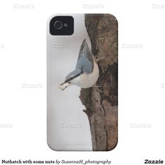Nuthatch with some nuts iPhone 4 case Iphone 4, Iphone Case Covers, Bird, Shop, Birds, Store