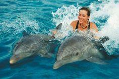 Enjoy Snorkeling Tour from Safaga port with All Tours Egypt