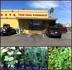 Viet-market-herb-collage