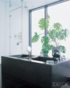 split-leaf philodendron (Monstera deliciosa) softens the black-granite modernity of the master bath