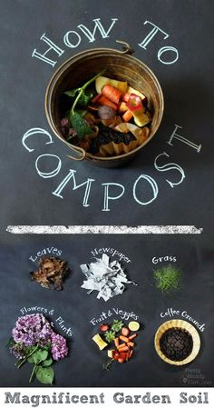 How to Compost - food scraps, coffee grounds, leaves, and of course...a few worms.                                                                                                                                                      More