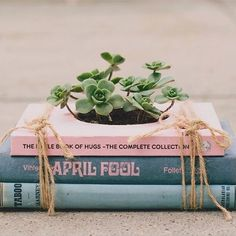 Growing Books | Stefany