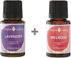 lavender and melrose
