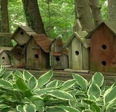 Old fence palings and tin, how cute are these bird houses in a row!