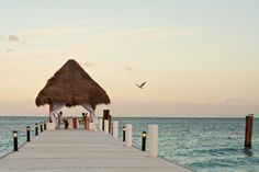 Valentine's Day ideas.  Excellence Riviera Cancun, Mexico.